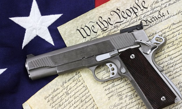 """Gun Confiscation Via """"Red Flag Law"""" Resolution"""